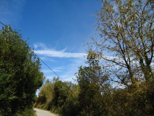 2013.10.31 - PSEKASMOI IOANNINA_21