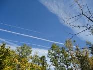 2013.10.31 - PSEKASMOI IOANNINA_25