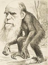 170px-Editorial_cartoon_depicting_Charles_Darwin_as_an_ape_(1871)